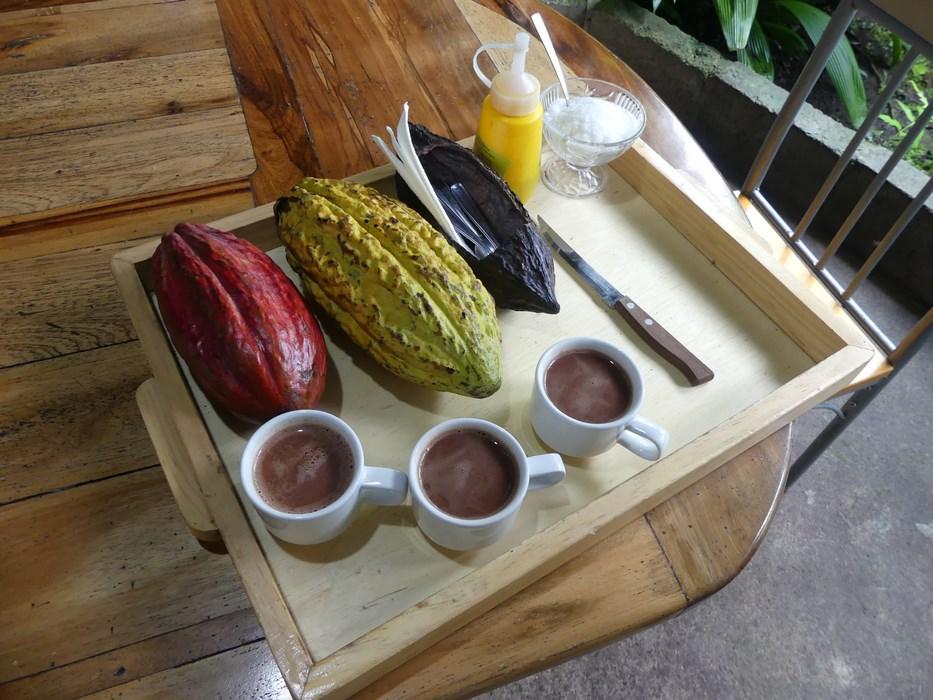 Ciocolata naturala