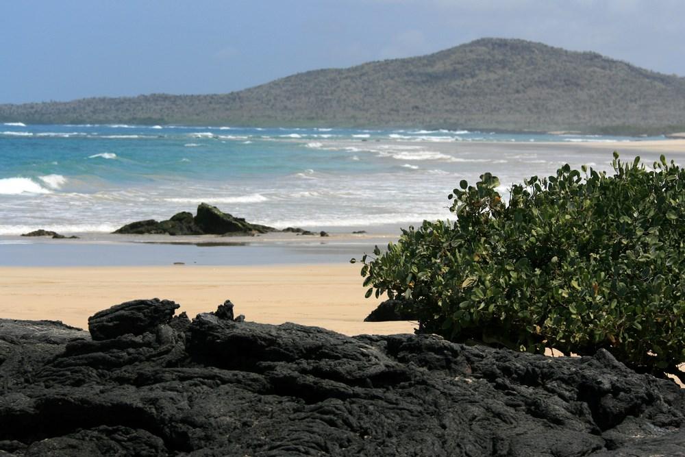 Insula Isabela