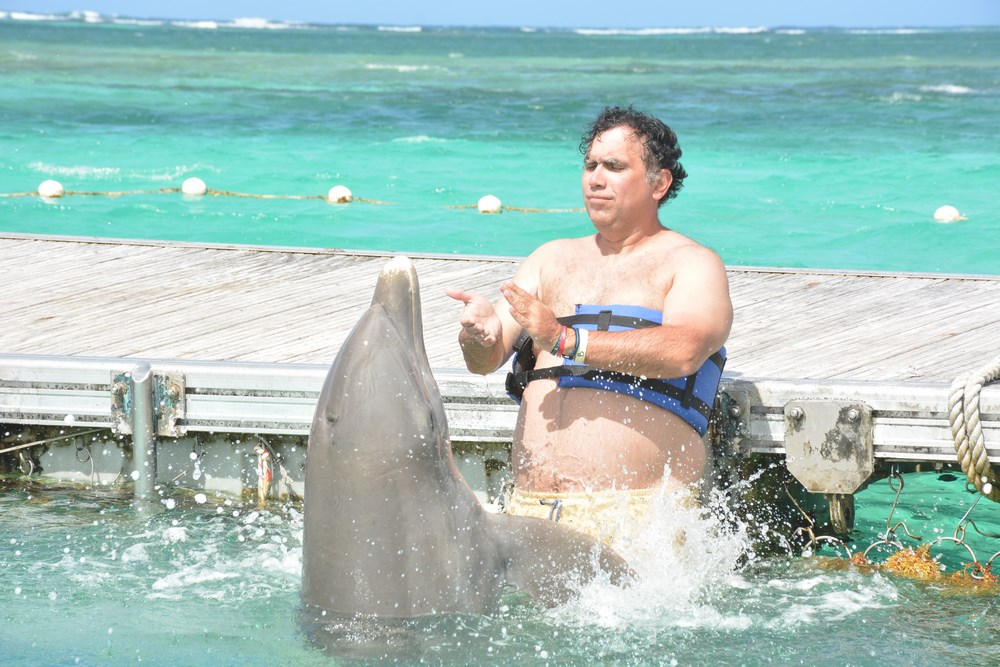 Stropit cu delfin