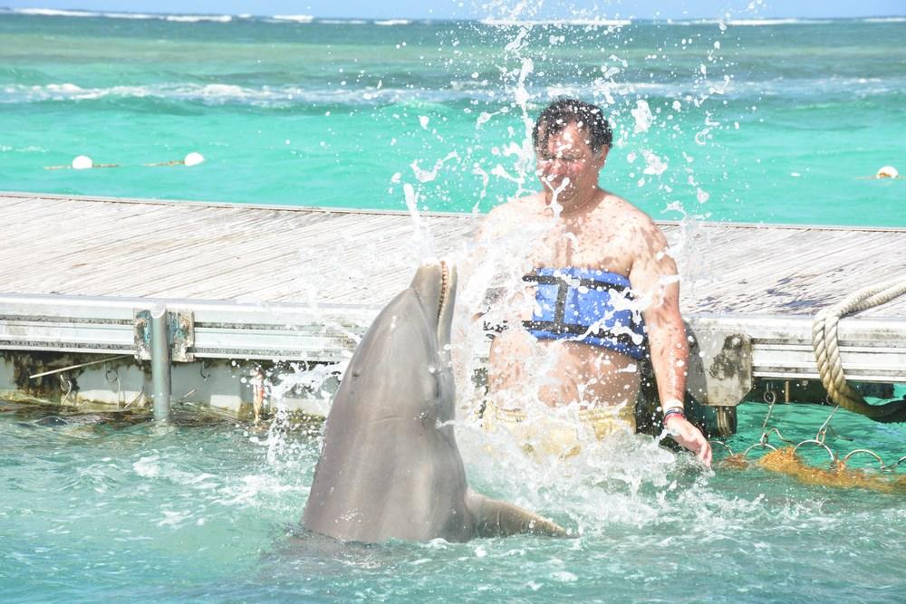 Joaca de delfini