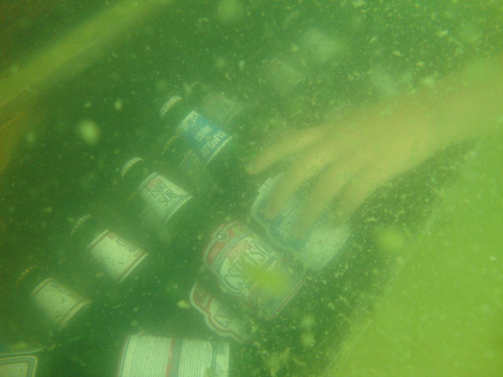 Bar bere subacvatic My Lake