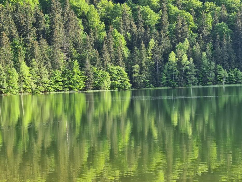 Lacul Sfanta Ana Harghita