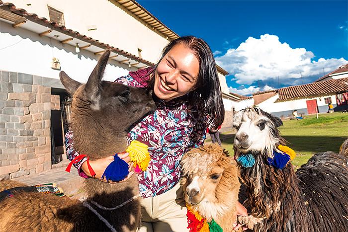 Lame in Cuzco