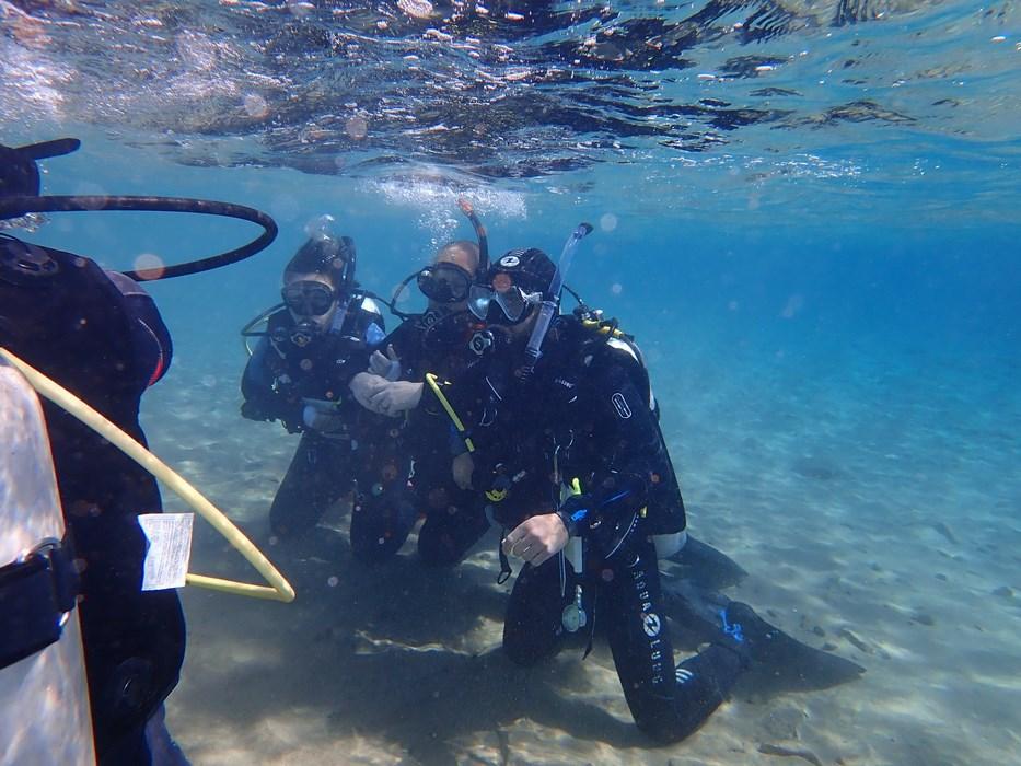 Diving in Grecia