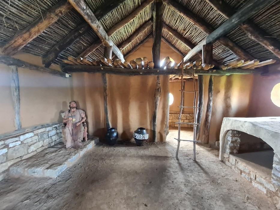 Interior casa sef trib trac