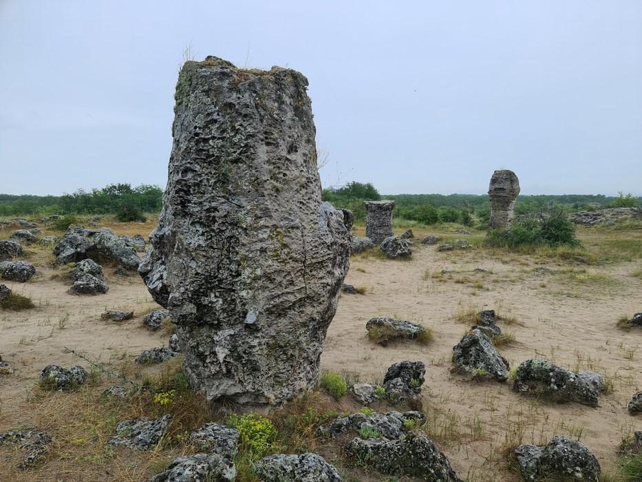 Padurea de piatra
