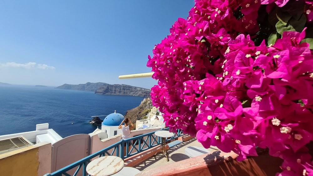 Flori in Santorini