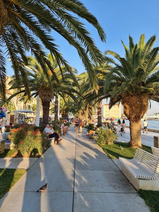 Esplanada palmieri